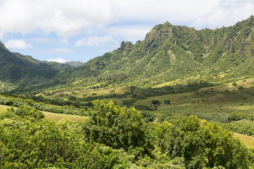 Kualoa Ranch // Gaby's Guide to Honolulu