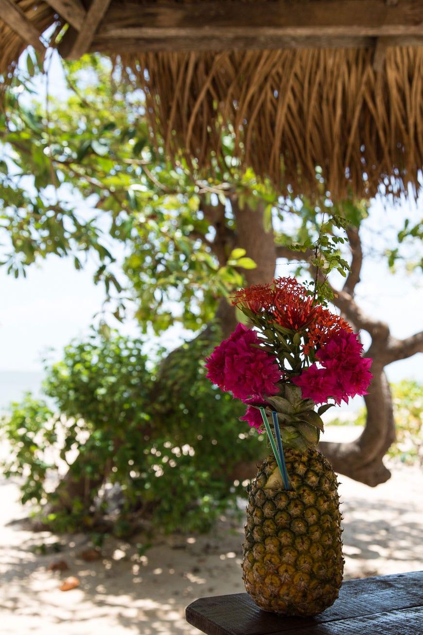 Pineapple Cocktails in Belém, Brazil