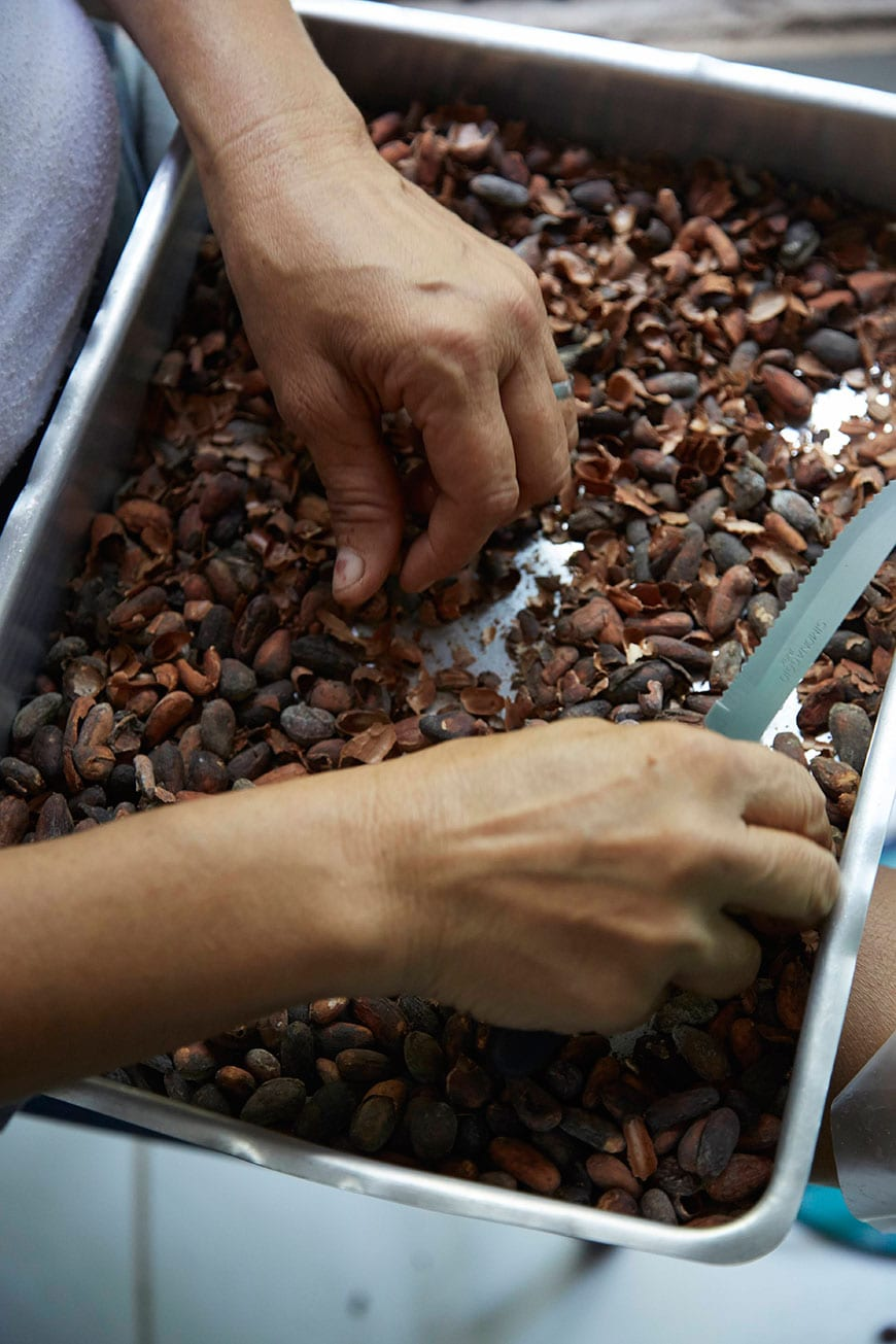 Raw Cacao Belém, Brazil photo by Matt Armendariz