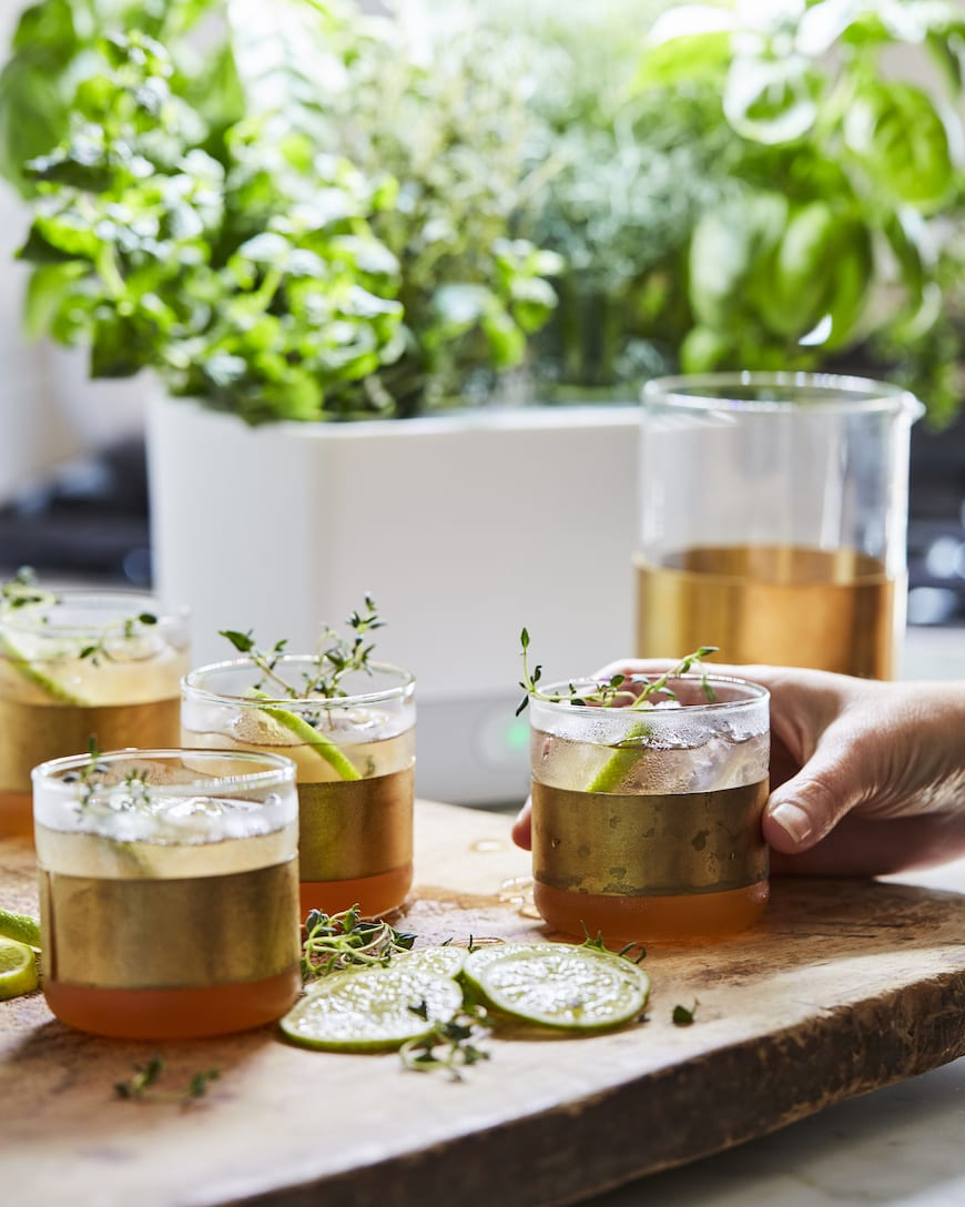 Thyme Apple Cider Spritz from www.whatsgabycooking.com (@whatsgabycookin)